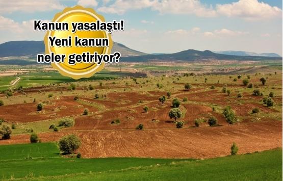 Araziyi bölerek bahçeye çeviren şirketlere hapis cezası verilecek!