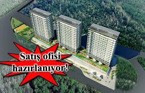 Fortis İstanbul projesi