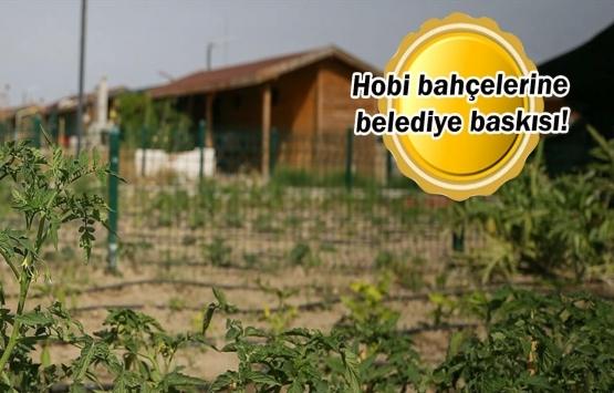 Hobi bahçesi sahipleri 'yapı kayıt belgesi' mağduru!