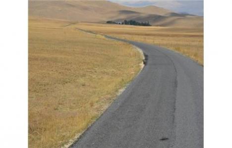 Van Erciş'te yol
