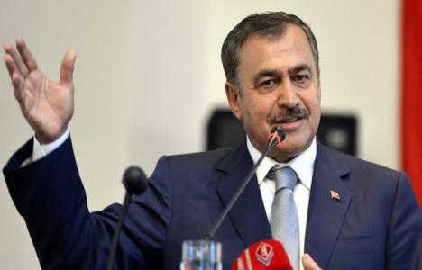 Bakan Eroğlu: Hasankeyf'in