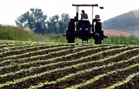 Verimli tarım arazilerine