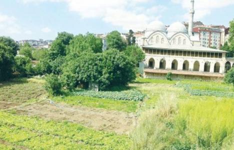 Piyalepaşa Cami önündeki bostanda inşaai faaliyetler duracak!