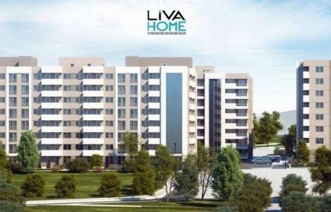 Liva Home Folkart