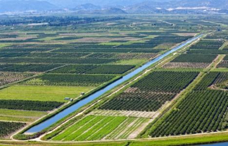 Tarım alanlarının inşaata
