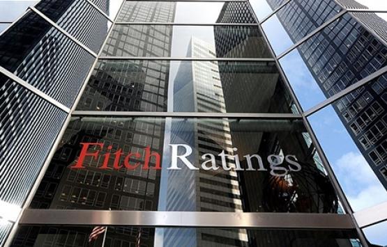 Fitch Ratings Direktörü