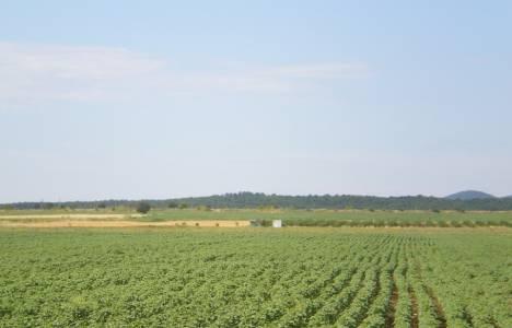 Tarım arazilerinde intikal 2014!