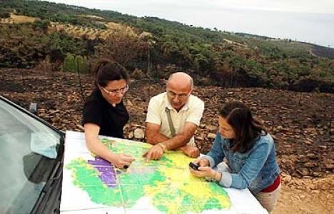 Manisa Akhisar'da ağaçlandırma çalışmaları başladı!