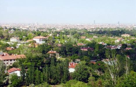 Konya Meram'da 50