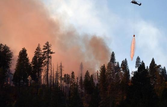 California'daki yangın ünlü