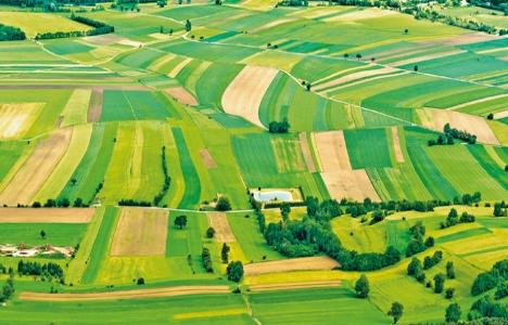 Hazineye ait tarım arazilerinin satışı!