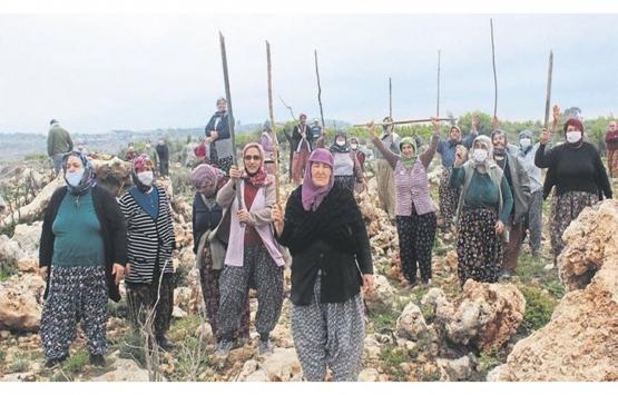Antalya'daki arazilerde tapu savaşı!