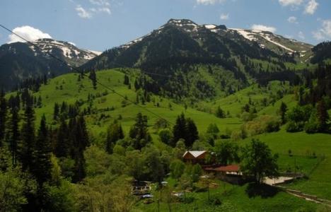 Ardahan Yalnızçam Dağı'na kayak tesisi yapılacak!