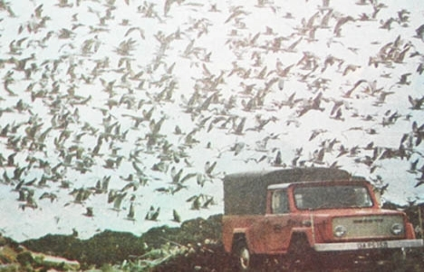 1977 yılında Sahilyolu'na