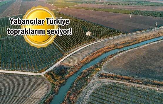 Yabancıların Türkiye'de 16 milyon metrekare tarım arazisi var!