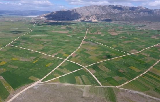 2022'ye kadar 296 bin 166 hektar arazi toplulaştırılacak!