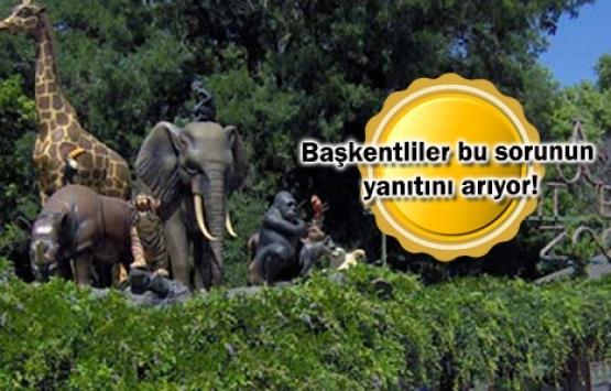 Ankara Hayvanat Bahçesi ne zaman açılacak?