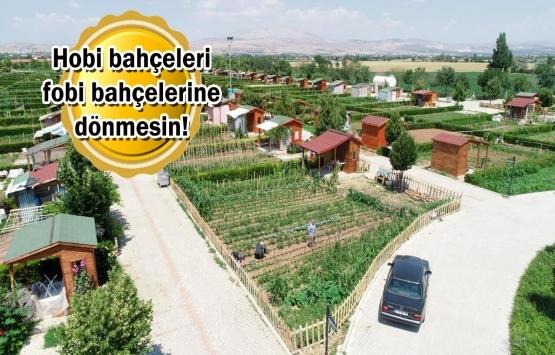 Yazlık ev alamayanlara 'hobi bahçesi' alternatifi!