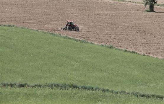 Hazineye ait tarım arazileri çiftçilere kiralanacak!