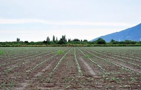 Çiftçilere borç ertleleme