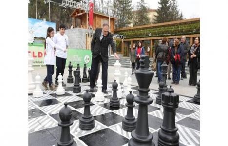 Bolu'da satranç parkı açılıyor!