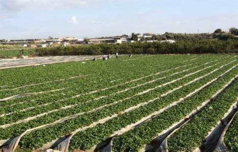 Tarım arazileri miras yolu ile bölünemeyecek!