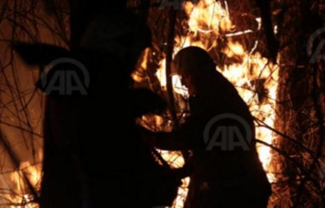 Polonezköy'de çıkan yangın