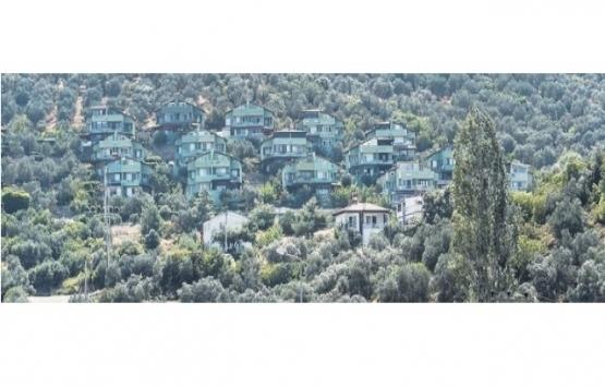 Burhaniye'de doğa katliamını gizlemek için villaları yeşile boyadılar!