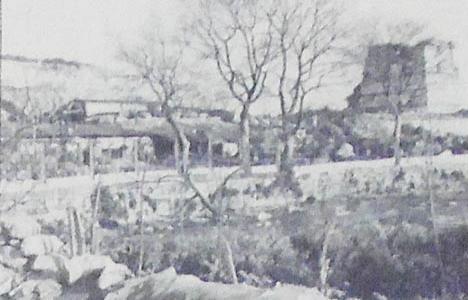 1977 yılında İstanbul