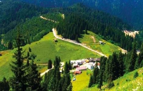 Trabzon Erikbeli Yaylası'na 12 milyon TL'lik turizm yatırımı!