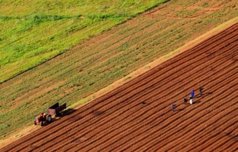 Türk yatırımcılar Sudan'da kiralanan tarım arazileri projesini bekliyor!
