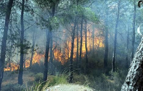 Adrasan'da orman yangını çıktı!
