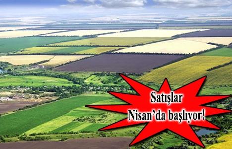 Hazineye ait tarım arazileri satışa çıkıyor!