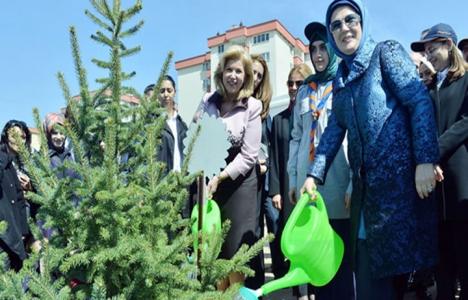 Nevşehir'de Bereket Ormanları