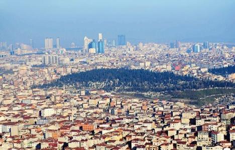 İstanbullu yeşil alanın