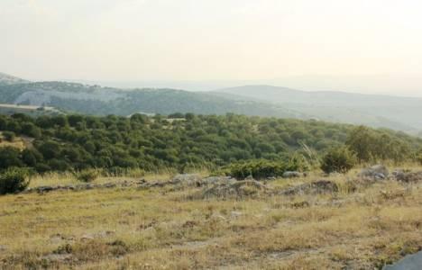 Eskişehir Yolu Ballıkuyumcu'daki ormanlık alan imara açılıyor!