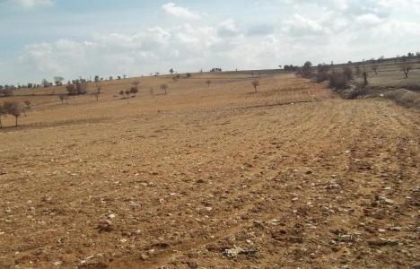Tarım arazileri bölünebilir