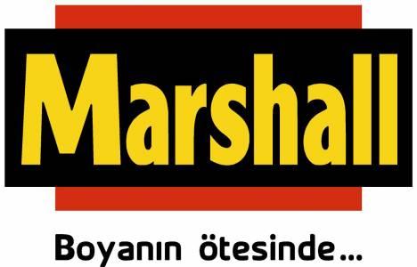 Marshall Boya hisselerinin
