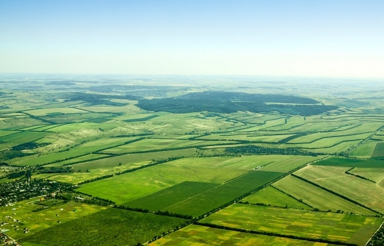 Yatırım ve istihdam taahhüt eden yatırımcılara ihalesiz arazi imkanı!