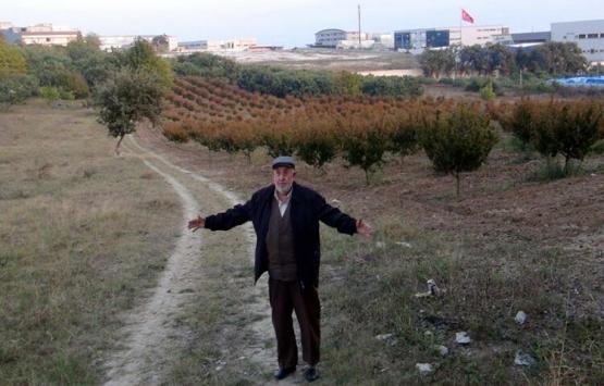 Bursa'da 50 milyonluk arsa vurgunu!