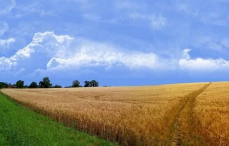 Yeni toprak kanunu neler getiriyor?
