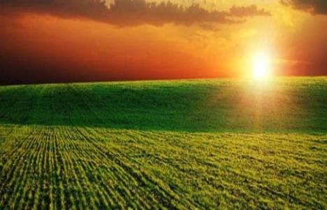 Tarım arazilerinde kadastro