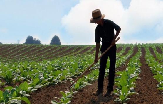 Ziraat Bankası'ndan çiftçilere