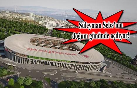 Vodafone Arena 5