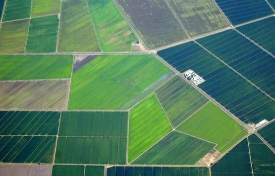 Arazi toplulaştırma maliyetleri azaltıyor!
