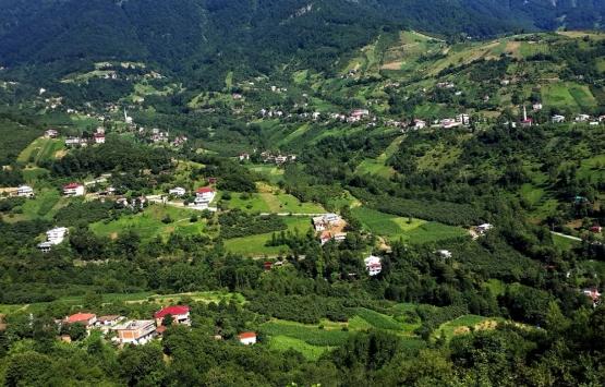 Trabzon'da kaçak yapılar