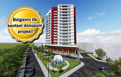Livza Zeytinburnu projesi geliyor! Yeni proje!