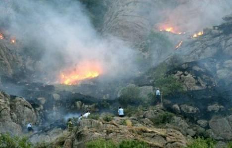 Afyonkarahisar'da yangın çıktı!