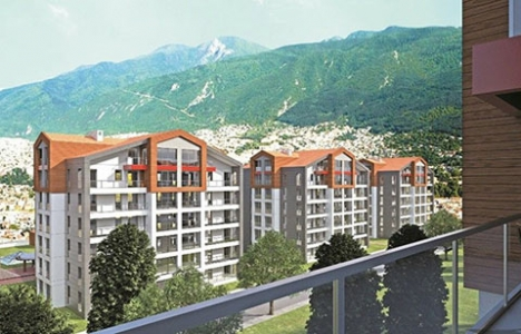 Alpiş Group, Tuana