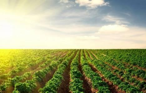 Tarımsal arazilerin